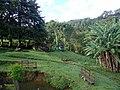 Ilhabela - SP - panoramio (2).jpg
