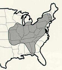 Indiana Bat Range FWS.jpg