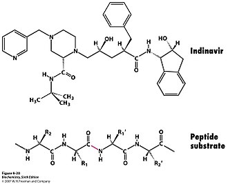 Active site - Indinavir, an HIV protease inhibitor.jpg
