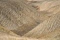 Irnf042-Przez Turkmeński Step.jpg