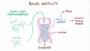 ملف:Irritable bowel syndrome.webm