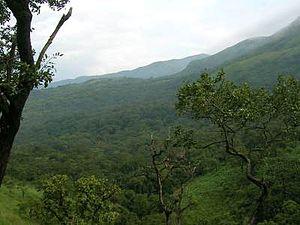 Brahmagiri (hill), Karnataka - Image: Irupu 2