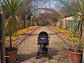 Isaac In Monet's Garden - panoramio.jpg