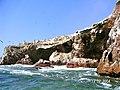 Islas Ballestas - panoramio (23).jpg