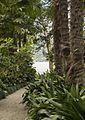Isole Brissago 16 apr 2016 143.jpg
