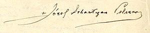 Józef Sebastian Pelczar - Image: Józef Sebastian Pelczar podpis