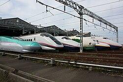 JR East Shinkansen-vicigo en Niigata Depot 200910.jpg