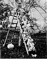 Jabolka 1929.jpg