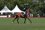 Jaeger-LeCoultre Polo Masters 2013 - 31082013 - Match Legacy vs Jaeger-LeCoultre Veytay for the third place 30.jpg