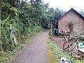 Jalan kampung dekat hutan di Desa Cendono, Purwosari, Pasuruan - panoramio.jpg