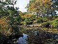 Japanese Garden Pond At Kibogaoka Park (233228269).jpeg