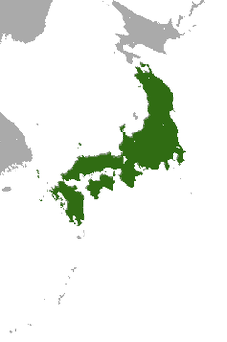 Japanese Shrew Mole area.png