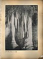 Jenolan Caves N.S.W (8953022645).jpg