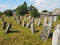 Jewish cemeteries in Pastavy 1f.jpg