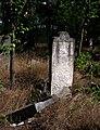 Jewish cemetery Otwock (Karczew - Anielin) IMGP7653.jpg