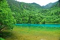 Jiuzhaigou, Aba, Sichuan, China - panoramio (55).jpg