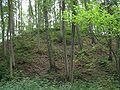 Jomantu piliakalnis.jpg