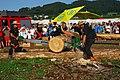 Jugendlager 2017 Powersägen Schnitzen (18) (35280225823).jpg