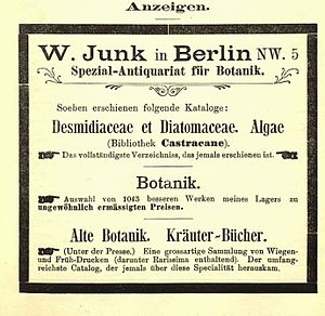 Wilhelm Junk