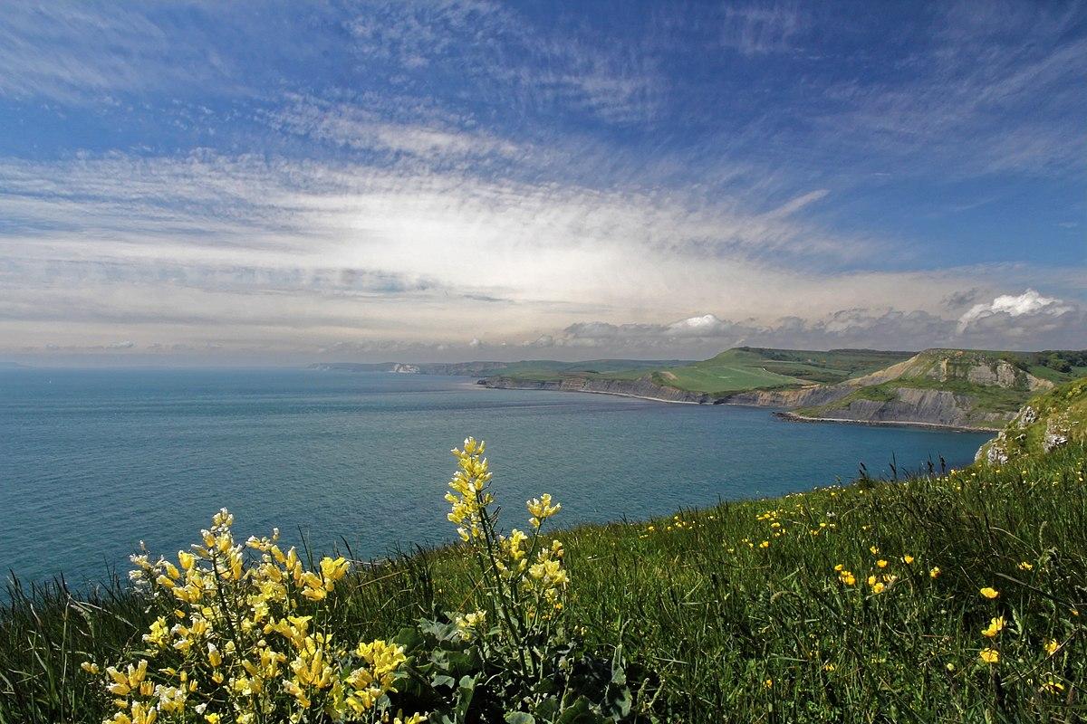 coast - photo #40
