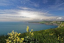 Jurassic Coast west of St Aldhelm's Head.JPG