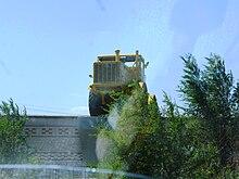 Трактор Т-25 (Владимировец)