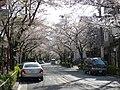 Kamuro-saka Slope, Tokyo.jpg