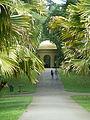 Kandi jardin botanique de Peradeniya (le parc) (1).JPG