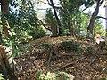 Kanezuka Mound (カネ塚) - panoramio.jpg