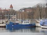 Karu at Tallinn 27 April 2013.JPG