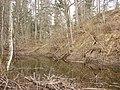 Kastrānes pilskalns, Suntažu pagasts, Ogres novads, Latvia - panoramio - M.Strīķis (5).jpg