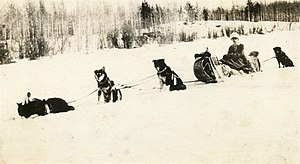 Kate Rice - Kate Rice with her sled dog team