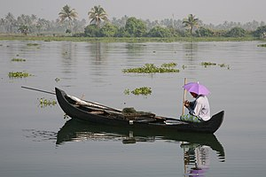 image of backwater in kerala