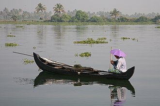 Fishing in India - A fisherman in the backwaters of Kerala