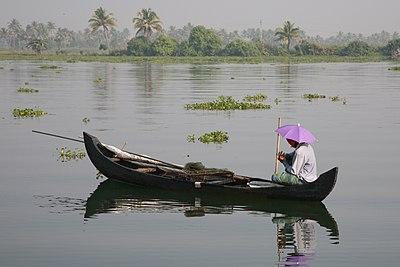 Kerala backwater 20080218-11.jpg
