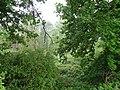 Kevelaer-Winnekendonk NSG Fleuthbenden PM18-05.jpg