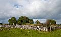 Kilcreevanty Abbey South Range 2010 09 16.jpg