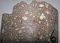 Kimberlite (Pionerskaya Pipe, Late Devonian; Arkhangelsk Region, Russia) 3.jpg