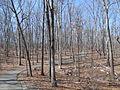 Kings Mountain National Military Park - South Carolina (8558898250) (2).jpg