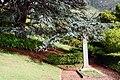 Kirstenbosch-009.jpg