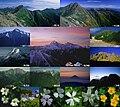 Kitadake various 2004-7-18etc.jpg