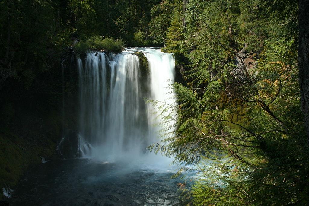 Koosah Falls, McKenzie River