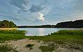 Kubija järv 2014 06.jpg