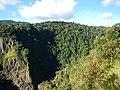 Kuranda QLD 4881, Australia - panoramio (68).jpg