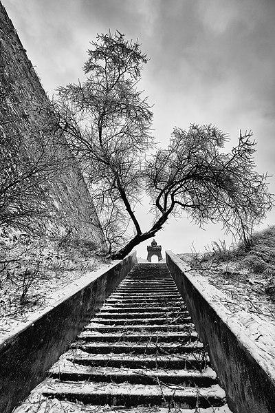 Куяльник — aрка, сходи та підпірна стіна. Якісне зображення Вікісховища. Автор фото — Q-lieb-in [CC BY-SA 4.0]
