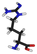 L-arginine-3D-sticks-(tall).png