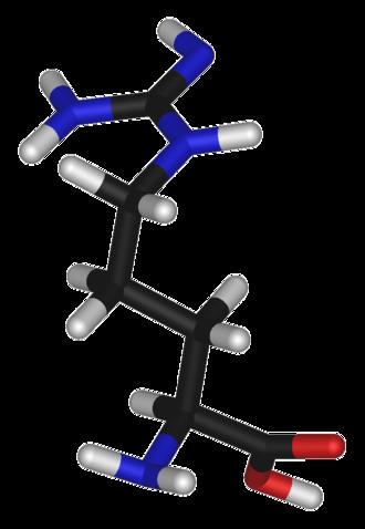 Arginine (data page) - 3D structure of L-arginine
