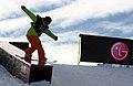 LG Snowboard FIS World Cup (5435330341).jpg