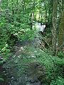 La Brinjame en forêt de Bazoches.JPG