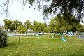 La Promenade des Tamaris avec ses arbres peints en bleu (2).JPG